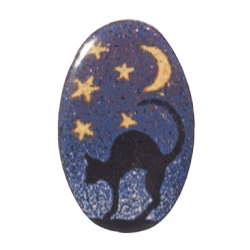 brooch oval with cat at starry sky